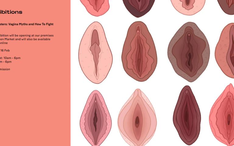 vagina